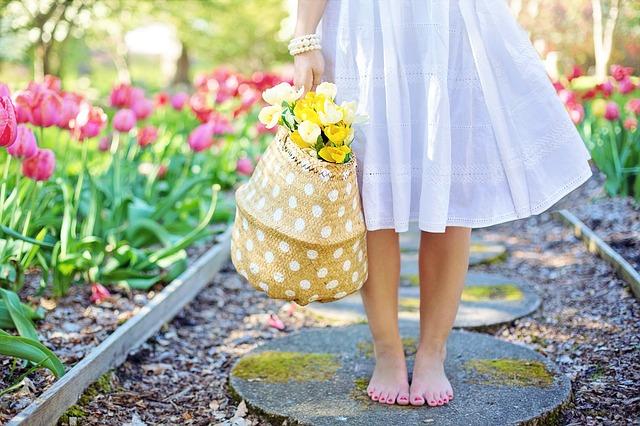 záhony tulipánů